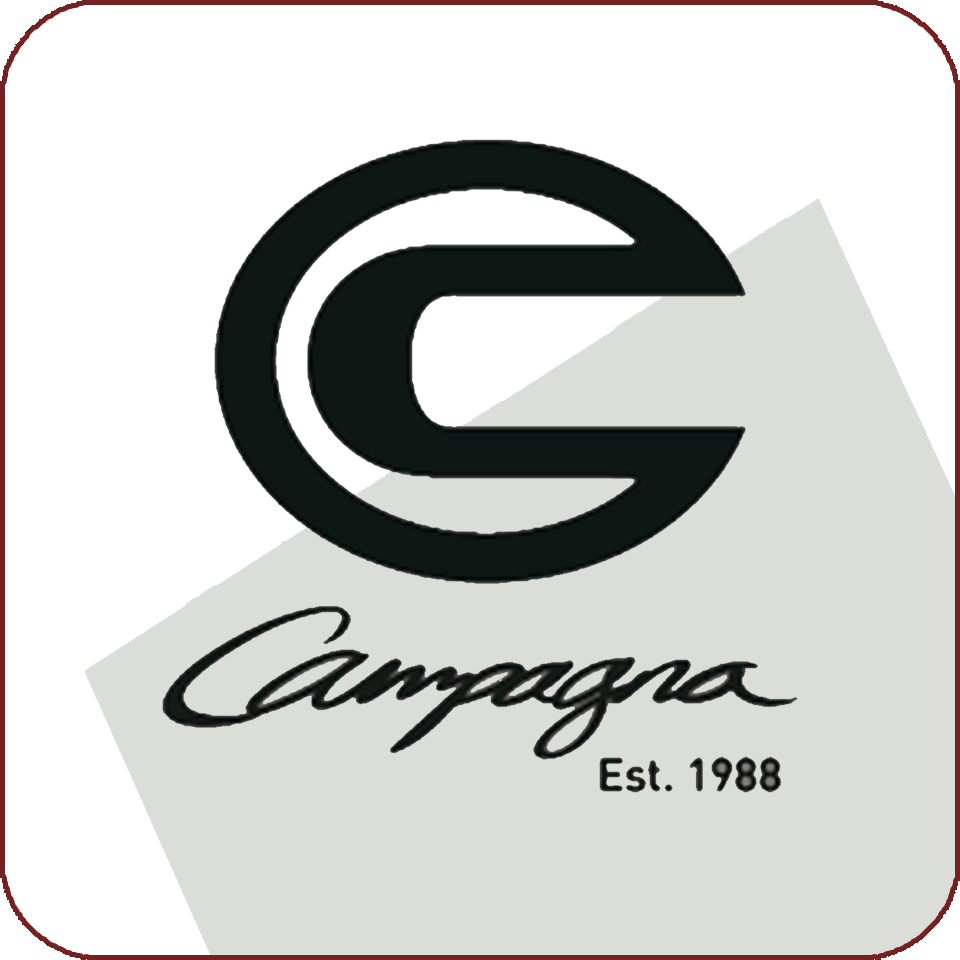 Campagna ECU-flash